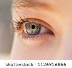 half face section beauty...   Shutterstock . vector #1126956866