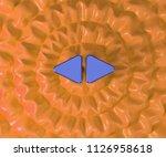 left right mark icon on...   Shutterstock . vector #1126958618