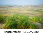 View Of Dead Dunes  Curonian...