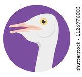 ostrich  a flightless swift...   Shutterstock .eps vector #1126976003