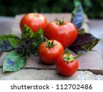 Freshly Picked Tomatoes On The...