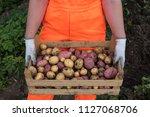 young woman farmer in orange...   Shutterstock . vector #1127068706