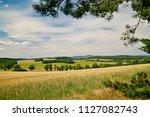 view of summer rural...   Shutterstock . vector #1127082743