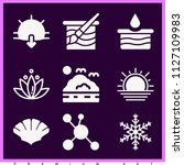 set of 9 nature filled icons... | Shutterstock .eps vector #1127109983