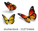 Stock photo three yellow butterfly isolated on white background 112714666