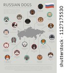 dogs by country of origin.... | Shutterstock .eps vector #1127175530