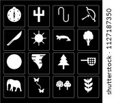 set of 16 icons such as herb ...