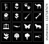 set of 16 icons such as monkey  ...