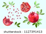 pomegranate set with leaves  ...   Shutterstock .eps vector #1127391413