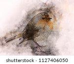 little robin watercolor digital ... | Shutterstock . vector #1127406050
