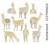 graceful white llama set ... | Shutterstock .eps vector #1127434613