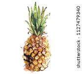 pineapple watercolor hand drawn ... | Shutterstock . vector #1127479340