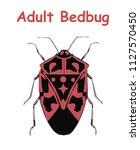adult bed bug. poster tato...   Shutterstock .eps vector #1127570450