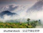 Landscape Sea Of Mist On Phu ...