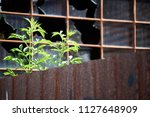 close up view from an old ... | Shutterstock . vector #1127648909