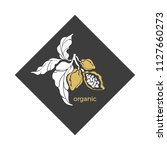 vector cocoa logo. symbol of... | Shutterstock .eps vector #1127660273