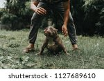 man is dog trainer with... | Shutterstock . vector #1127689610