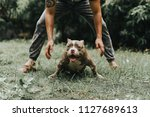 man is dog trainer with... | Shutterstock . vector #1127689613