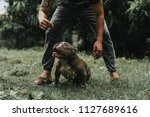 man is dog trainer with...   Shutterstock . vector #1127689616