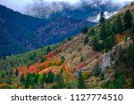 forest in mountains in autumn...   Shutterstock . vector #1127774510