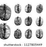 set of coffee beans isolated on ... | Shutterstock .eps vector #1127805449