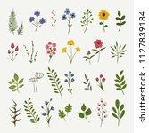 flowers background illustration....   Shutterstock .eps vector #1127839184