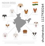dogs by country of origin.... | Shutterstock .eps vector #1127930264