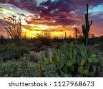 Nature Desert Landscape  ...