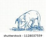 sniffing pig  blue pen sketch... | Shutterstock .eps vector #1128037559