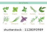 set of herbs. collection of... | Shutterstock .eps vector #1128093989