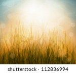 spring or summer abstract... | Shutterstock . vector #112836994