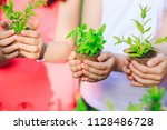 people hands cupping plant... | Shutterstock . vector #1128486728