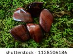rich  tumbled red tigers eye ... | Shutterstock . vector #1128506186