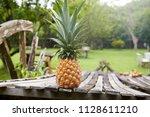 ripe pineapple in the garden. ... | Shutterstock . vector #1128611210