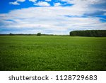 spring meadow and forest... | Shutterstock . vector #1128729683