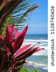 red tropical leaves at ocean... | Shutterstock . vector #1128740606