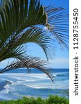 palm tree leaves at surfing... | Shutterstock . vector #1128755450