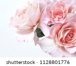 Fresh Bunch Of Pink Rose On...