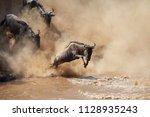 it is the great wildebeest... | Shutterstock . vector #1128935243