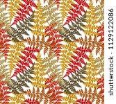 fern frond herbs  tropical... | Shutterstock .eps vector #1129122086