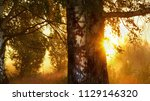 strong beautiful fog and... | Shutterstock . vector #1129146320