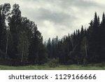 gloomy atmosphere of evening in ... | Shutterstock . vector #1129166666