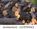 pile of firewood. preparation... | Shutterstock . vector #1129295063