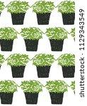 seamless pattern green plant... | Shutterstock . vector #1129343549