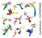 hummingbird vector tropical... | Shutterstock .eps vector #1129405868