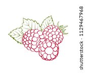 red outline raspberries with... | Shutterstock .eps vector #1129467968