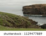brown cliffs with green fields... | Shutterstock . vector #1129477889