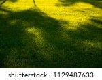green meadow  evening | Shutterstock . vector #1129487633