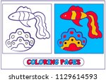 fish guppies and shell. the... | Shutterstock .eps vector #1129614593