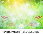 summer noon backgrounds with... | Shutterstock . vector #1129662209